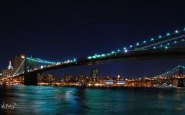 Brooklyn Bridge Harvest...