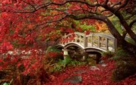 Japanese Garden British...